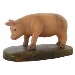Porco em pé