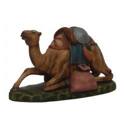 Camelo deitado com tralha