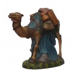 Camelo em pé com tralha
